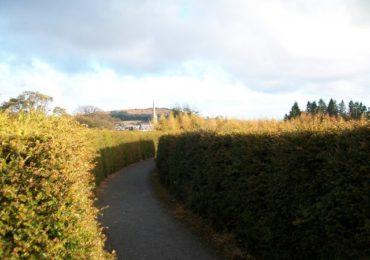 Castlewellan peace maze Irlanda